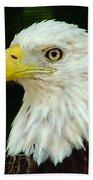 Bald Eagle-42 Bath Towel
