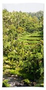 Bali Sayan Rice Terraces Bath Towel
