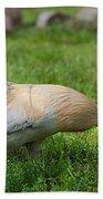 Barnyard Rooster 2 Bath Towel