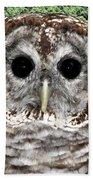 Barred Owl 1 Hand Towel