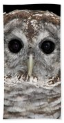 Barred Owl 3 Bath Towel