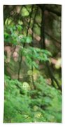 Barred Owl In Forest Bath Towel