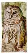 Barred Owl On Moss Bath Towel