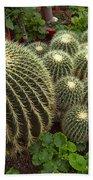 Barrel Cacti Bath Towel