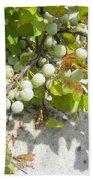 Beach Plum - Prunus Maritima - Island Beach State Park Nj Bath Towel