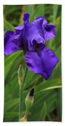 Beautiful Purple Iris Flower Art Bath Towel