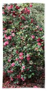 Beautiful Camellia Bush Bath Towel