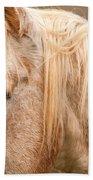 Beautiful Gray Horse Portrait Bath Towel