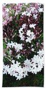 Beautiful Jasmine Flowers In Full Bloom Bath Towel
