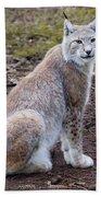 Beautiful Lynx Bath Towel