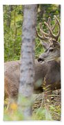 Beautiful Mule Deer Buck With Velvet Antler  Bath Towel