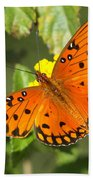 Beautiful Orange Butterfly - Gulf Fritillary Bath Towel