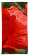 Beautiful Poppies 10 Bath Towel