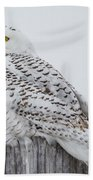 Beautiful Snowy Owl Bath Towel