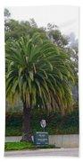 Beautiful Ventura Palm Bath Towel