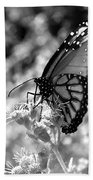 Butterfly Beauty In Nature Bath Towel