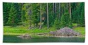 Beaver Dam In Heron Pond In Grand Teton National Park-wyoming Bath Towel