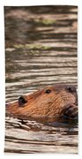 Beaver Feeding Bath Towel
