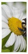 Bee And Daisy Bath Towel