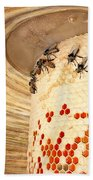 Bee Hive Bath Towel