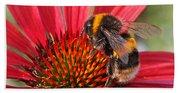 Bee On Red Coneflower 2 Bath Towel