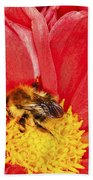 Bee On Red Dahlia Bath Towel