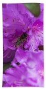 Bee On Rhododendrons Bath Towel