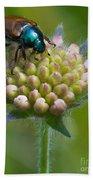 Beetle Sitting On Flower Bath Towel