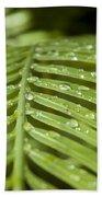 Bending Ferns Bath Towel by Carolyn Marshall