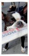 Betty The News Dog Bath Towel