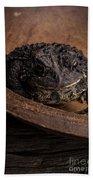 Big Black Toad Bath Towel