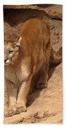 Big Cats Bath Towel