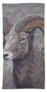 Big Horn Ram Bath Towel