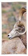 Big Horns Bath Towel