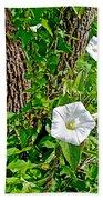 Bindweed In Pipestone National Monument-minnesota Bath Towel