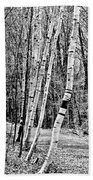Birch Sentinels Bath Towel