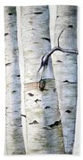 Birch Trees Hand Towel