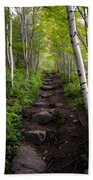 Birch Woods Hike Bath Towel