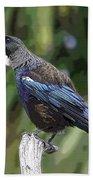 Bird 1 Hand Towel