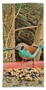 Bird And Feeder Bath Towel