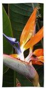 Bird Of Paradise Flowers Bath Towel
