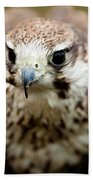 Bird Of Prey Flying Hand Towel