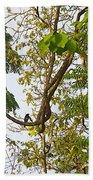 Bird On A Vine In Jungle Forest In Chitwan Np-nepal  Bath Towel