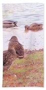 Bird Wildlife Bath Towel