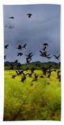 Birds Of The Wetlands V11 Bath Towel