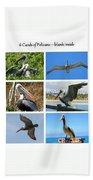 Birds - Pelicans - Boxed Cards Bath Towel