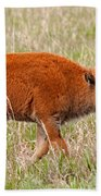 Bison Calf Grand Teton National Park Bath Towel
