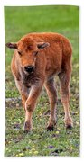 Bison Calf In The Flowers Yellowstone National Park Bath Towel