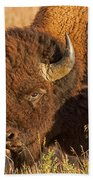 Bison Potrait At Teh Elk Ranch In Grand Teton National Park Bath Towel