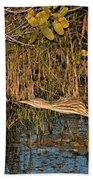 Bittern Stretched Out Bath Towel